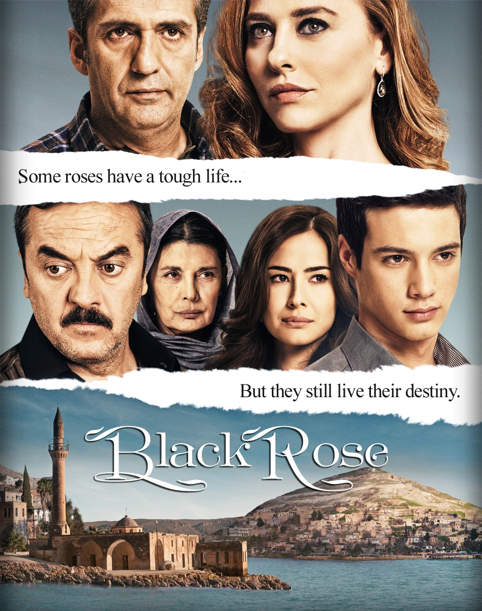 черная роза серия 37